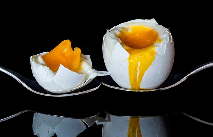 Egg 2161877 1280