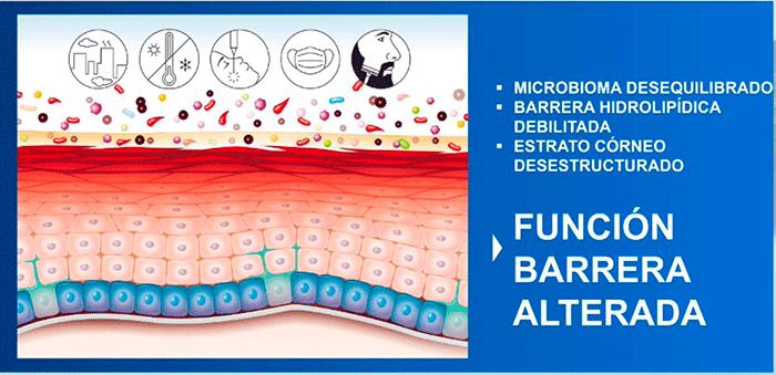 Microbioma Desequilibrado