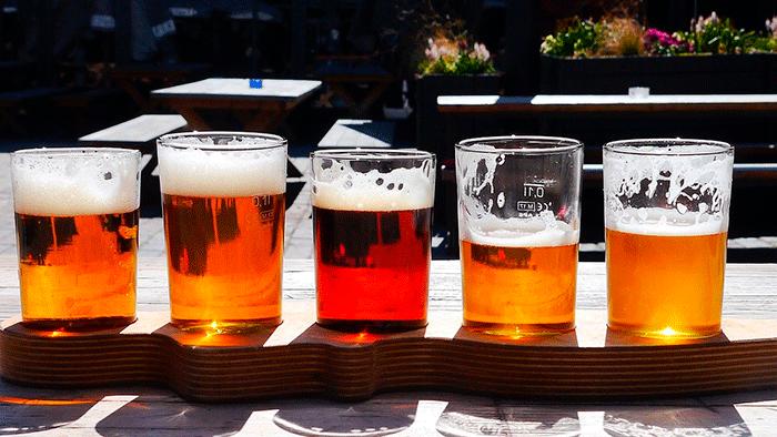 consumo de cerveza del CSIC