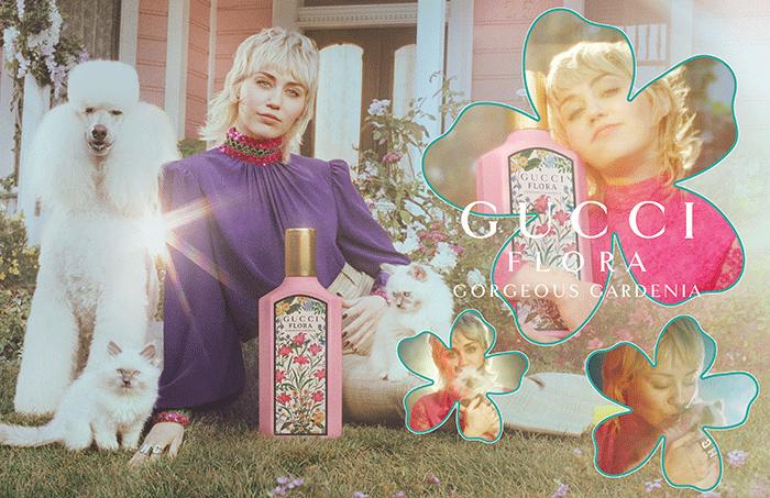 Perfumes Femeninos Navidad Gucci